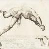 lo sport antichità